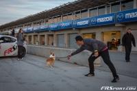 2014 Mazda Raceway Laguna Seca -114
